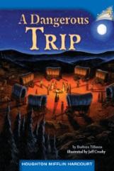 A Dangerous Trip
