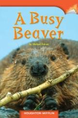 A Busy Beaver