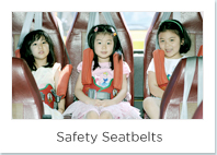 Safety Seatbelts